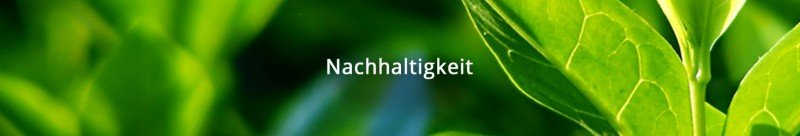 media/image/nachhaltigkeitpwhDagU92D5M7.jpg