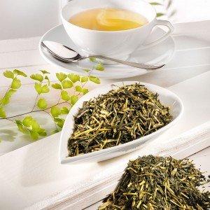 Grüner Tee Japan Kirishima Kukicha Bio