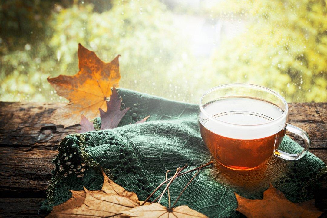 kategorie-autumnal
